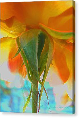 Spring In Summer Canvas Print by Brooks Garten Hauschild