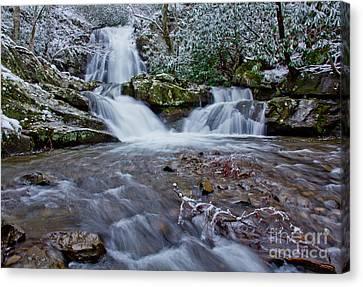 Spruce Flats Falls II Canvas Print by Douglas Stucky