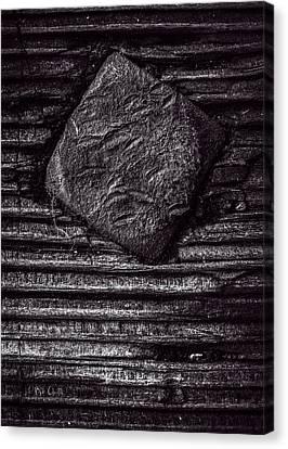Square Head Canvas Print by Bob Orsillo