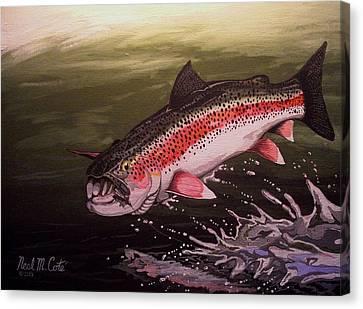 Squwalla Surprise Canvas Print by Neal Cote