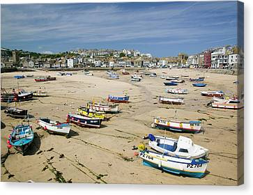 St Ives Canvas Print by Ashley Cooper