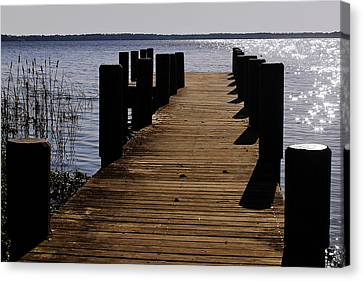 St Johns River Florida - A Chain Of Lakes Canvas Print by Christine Till