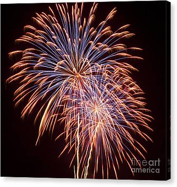 St Louis Fireworks Canvas Print by Philip Pound