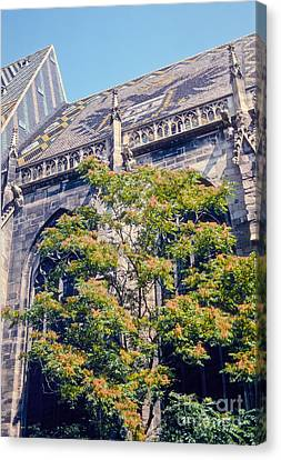 St. Stephen's Cathedral Canvas Print by Bob Phillips
