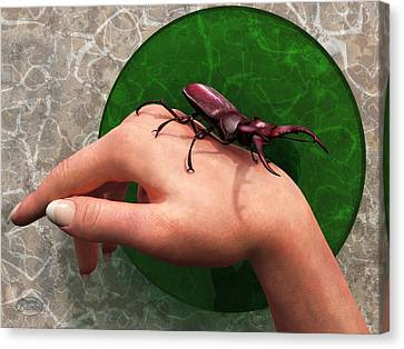 Stag Beetle On Hand Canvas Print by Daniel Eskridge