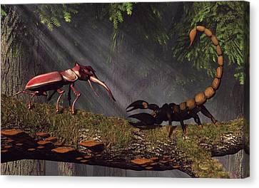 Stag Beetle Versus Scorpion Canvas Print by Daniel Eskridge
