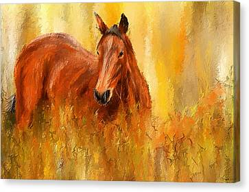 Stallion In Autumn - Bay Horse Paintings Canvas Print by Lourry Legarde