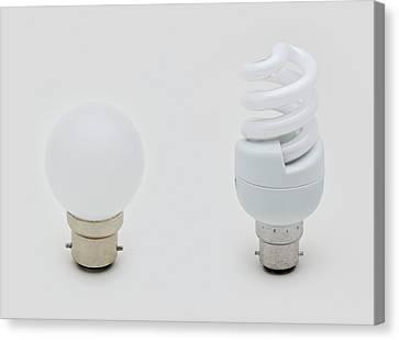 Standard Lightbulb Canvas Print by Dorling Kindersley/uig