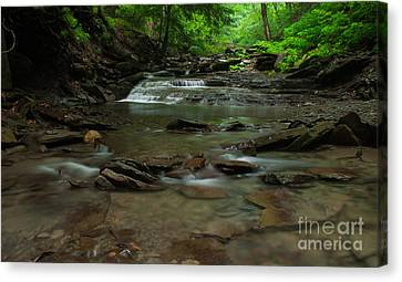 Standing In The Stream Canvas Print by Steve Clough