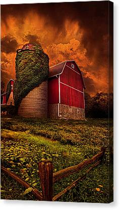 Standing Tall Canvas Print by Phil Koch