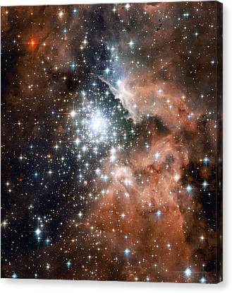 Star Cluster And Nebula Canvas Print by Sebastian Musial