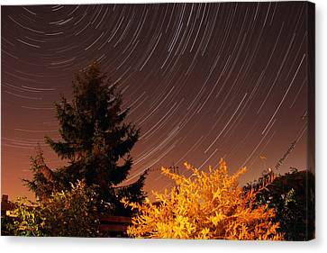 Star Trails Canvas Print by Jay Harrison