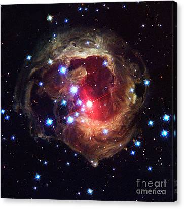 Star V838 Monocerotis Canvas Print by Science Source