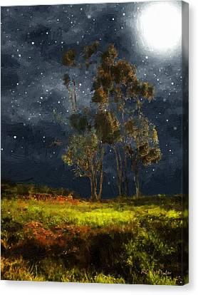 Starfield Canvas Print by RC deWinter