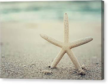 Starfish On Beach Vintage Seaside New Jersey  Canvas Print by Terry DeLuco