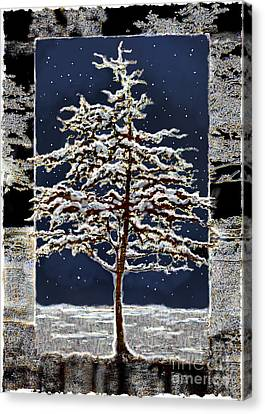 Starlight Canvas Print by Ursula Freer