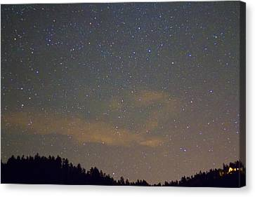Starry Night Canvas Print by James BO  Insogna