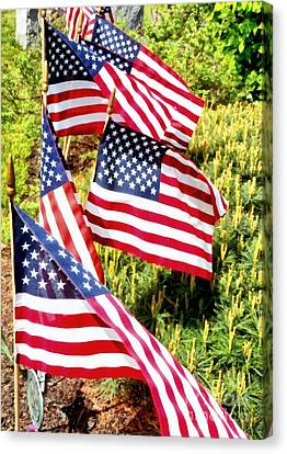 Stars And Stripes Canvas Print by Janine Riley