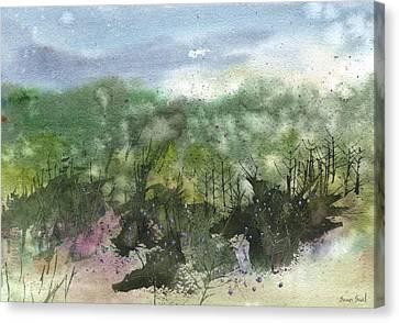 State Park 7-26-13 Canvas Print by Sean Seal