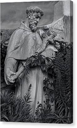 Stature Of Father Junepero Serra  In Black And White Canvas Print by Garry Gay