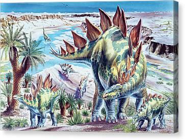 Stegosaurus Dinosaurs Canvas Print by Deagostini/uig