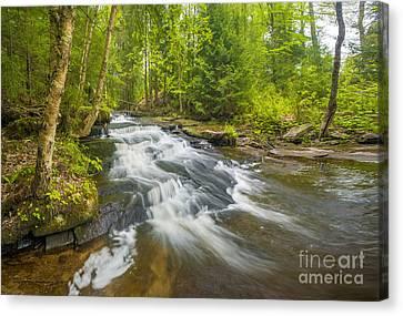 Step Falls Of Bicknell Brook Canvas Print by Jim Block