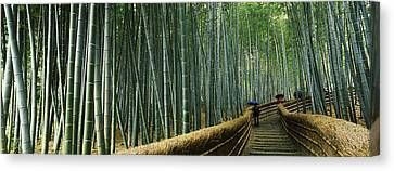 Stepped Walkway Passing Canvas Print by Panoramic Images