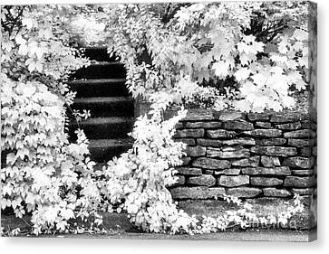 Steps And Stones Canvas Print by Jeff Holbrook