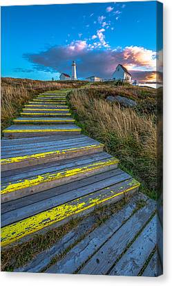 Steps To Cape Spear Canvas Print by Gord Follett