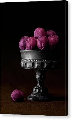 Still Life With Plums Canvas Print by Tom Mc Nemar