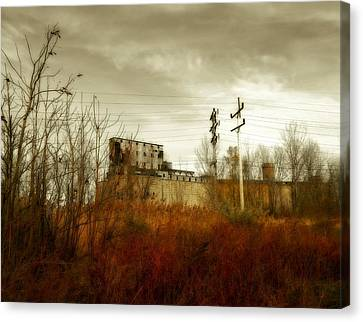 Still Standing Canvas Print by Gothicolors Donna Snyder