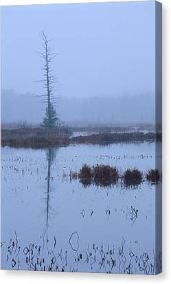 Stillness On The Flowage Canvas Print by Bruce Thompson