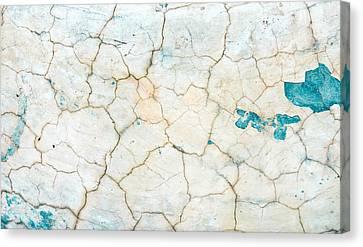 Stone Backgorund Canvas Print by Tom Gowanlock