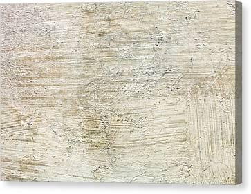 Stone Background Canvas Print by Tom Gowanlock
