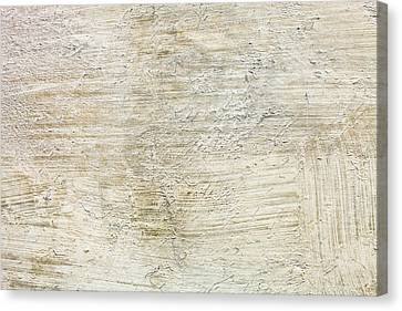 Stone Background Canvas Print by Tom Gowanlock