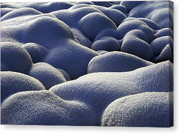 Stone Cold Canvas Print by Michael Van Beber
