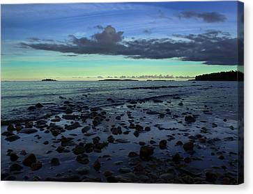Stones In Water Canvas Print by Oscar Karlsson