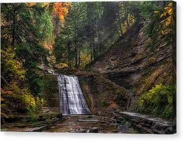 Stony Brook Park Canvas Print by Mark Papke