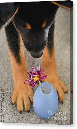 Stop And Smell The Flowers Canvas Print by Susan Smith