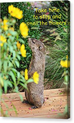 Stop And Smell The Flowers Canvas Print by Trina  Ansel
