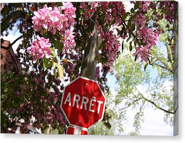 Stop To Smell The Flowers Canvas Print by Frederico Borges