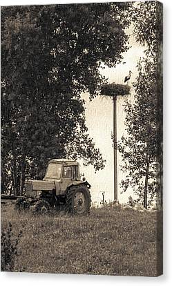 Stork Vs Tractor Canvas Print by Yevgeni Kacnelson