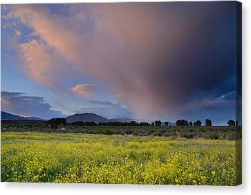 Storm At Sunset Canvas Print by Guido Montanes Castillo