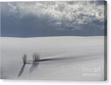 Storm At White Sands Canvas Print by Sandra Bronstein