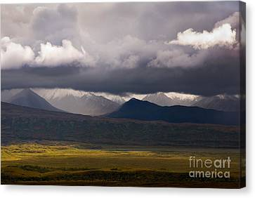 Storm Clouds, Denali National Park Canvas Print by Ron Sanford