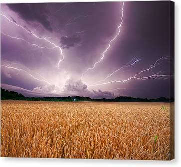 Storm Over Wheat Canvas Print by Alexey Stiop