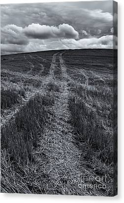 Storm Tracks Canvas Print by Mike  Dawson