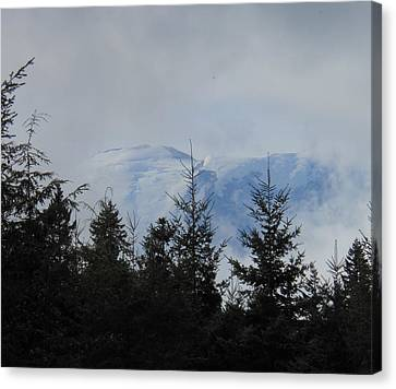 Stormy Day At Mt. Rainier Canvas Print by Kay Gilley