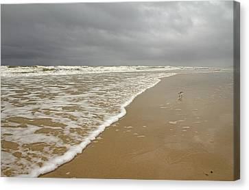 Stormy Day On Topsail Canvas Print by Betsy Knapp