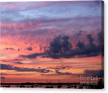 Stormy Skies Canvas Print by Dora Sofia Caputo Photographic Art and Design